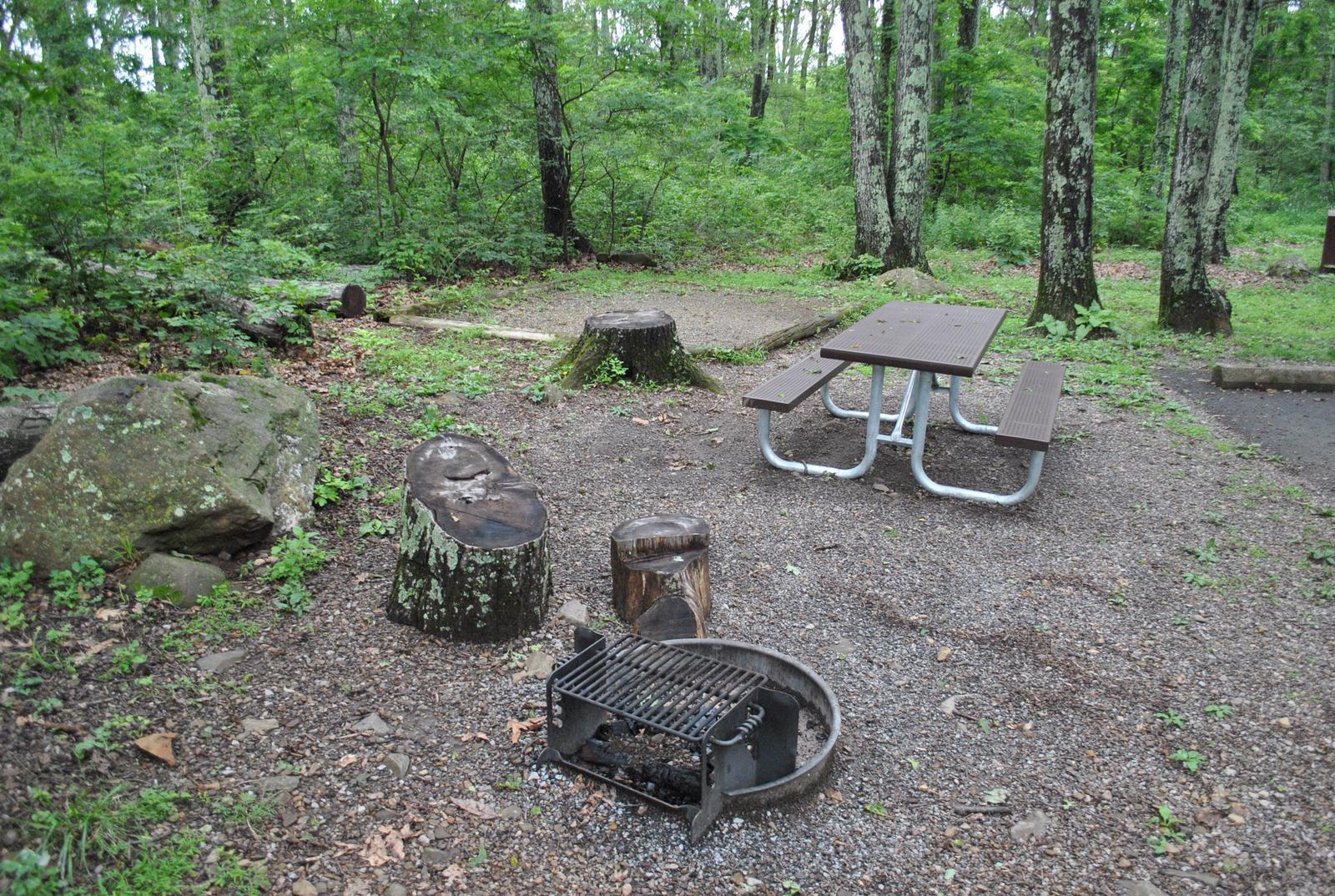 Mathews Arm Campground – Site A062