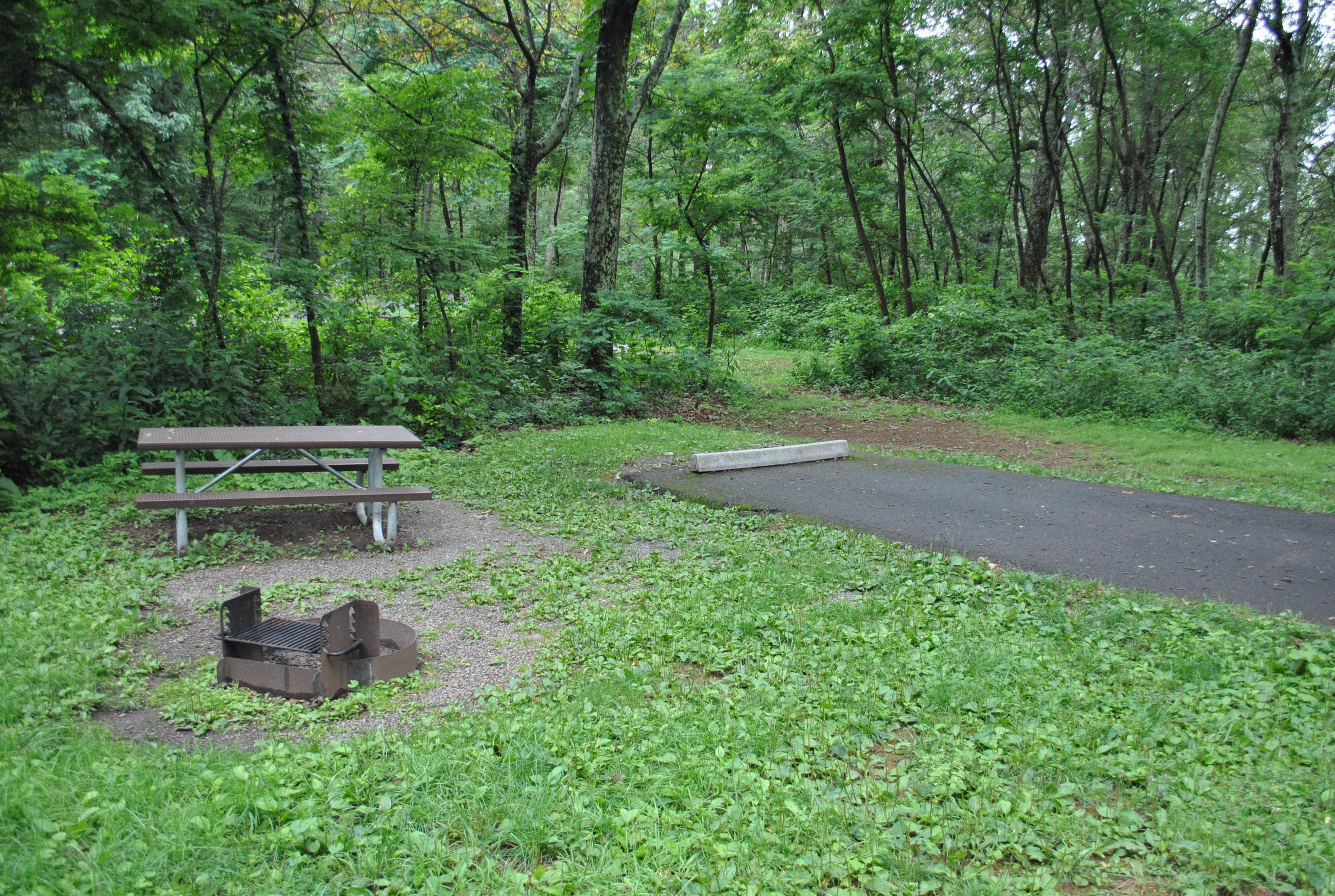 Mathews Arm Campground – Site A063