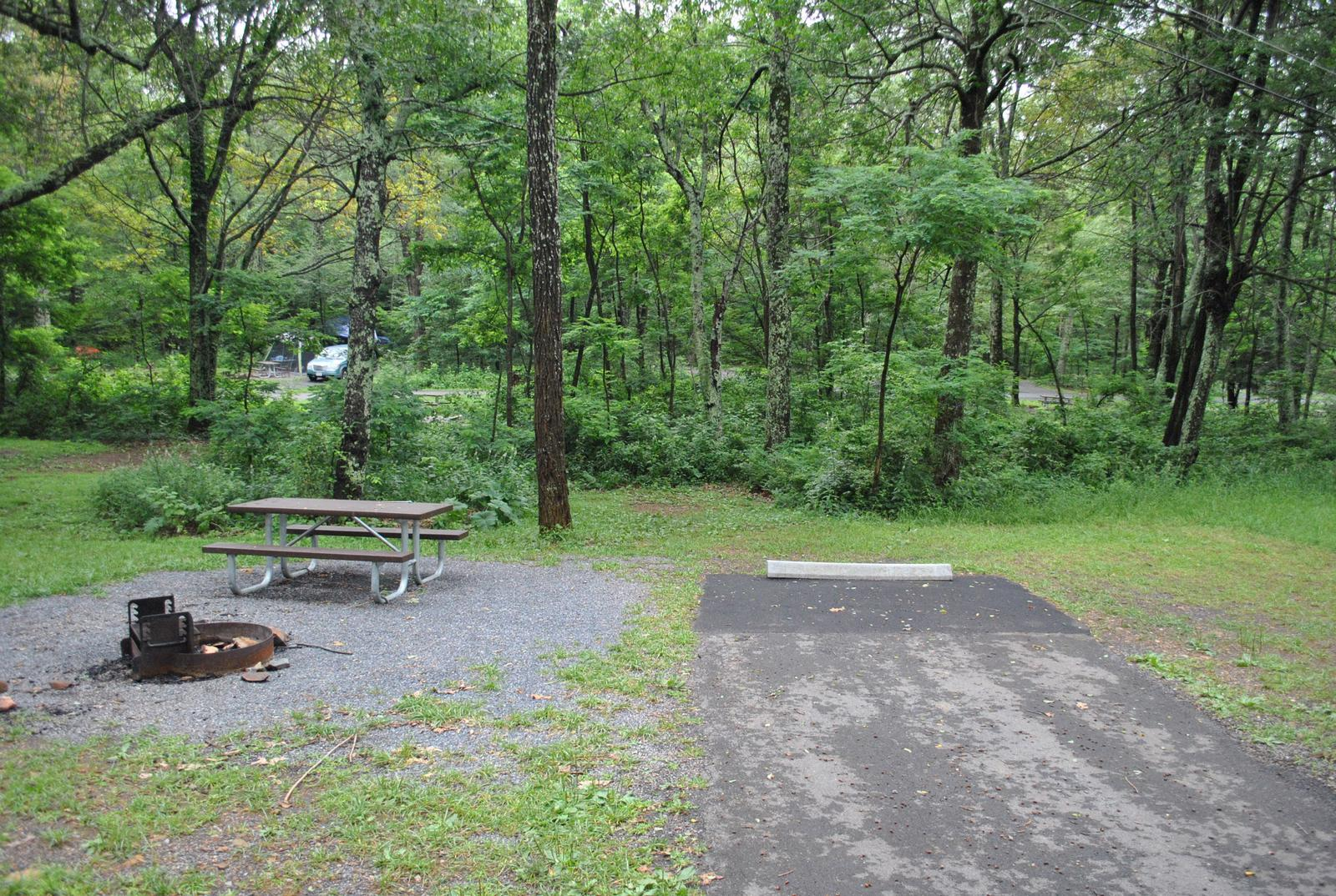 Mathews Arm Campground – Site A064