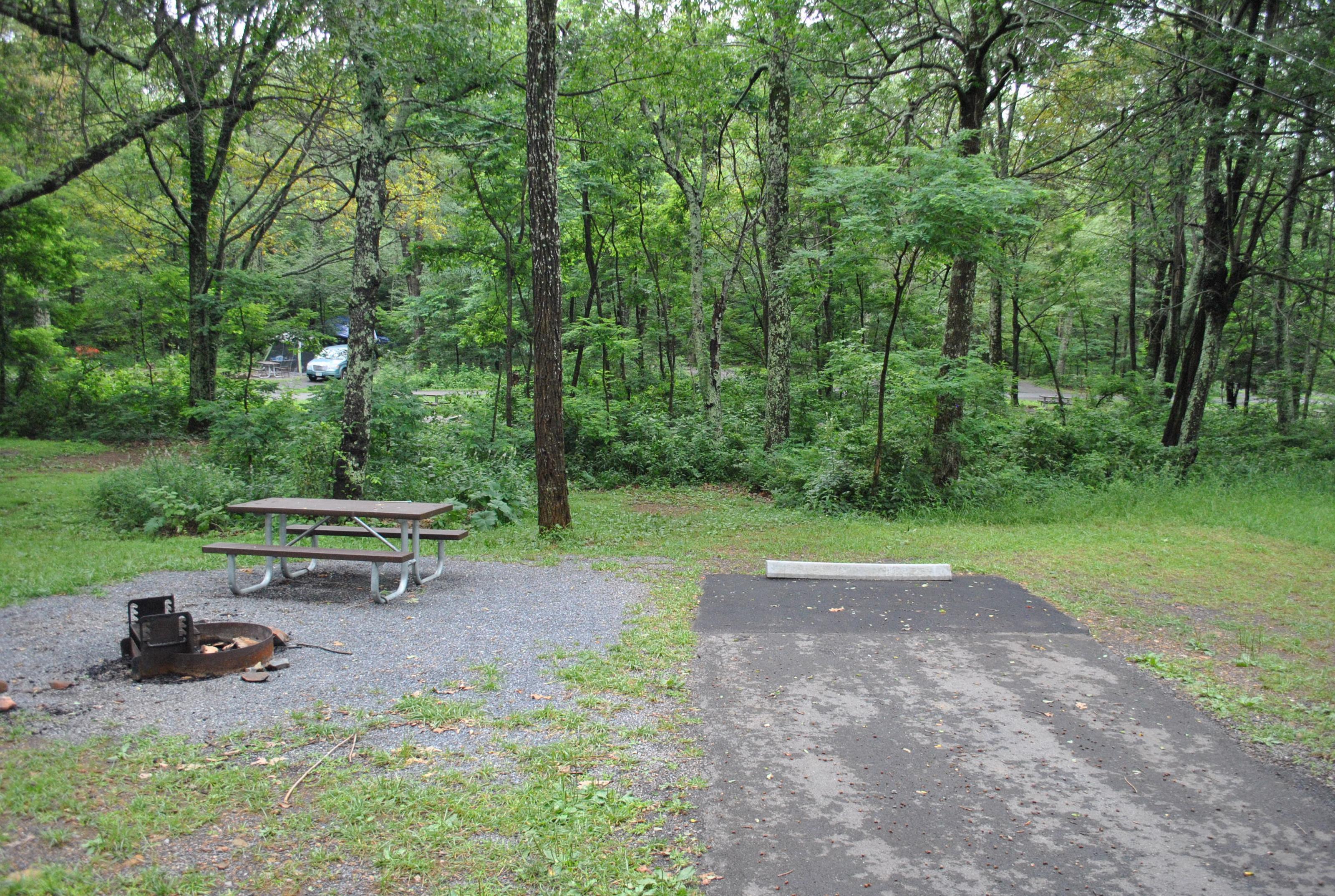 Mathews Arm Campground – Site A064