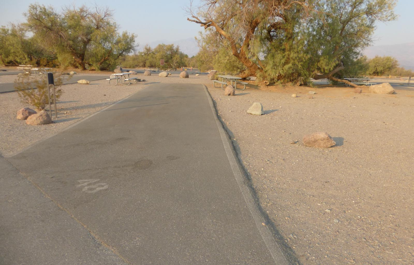 Furnace Creek Campground standard nonelectric site #48 with picnic table and fire ring.