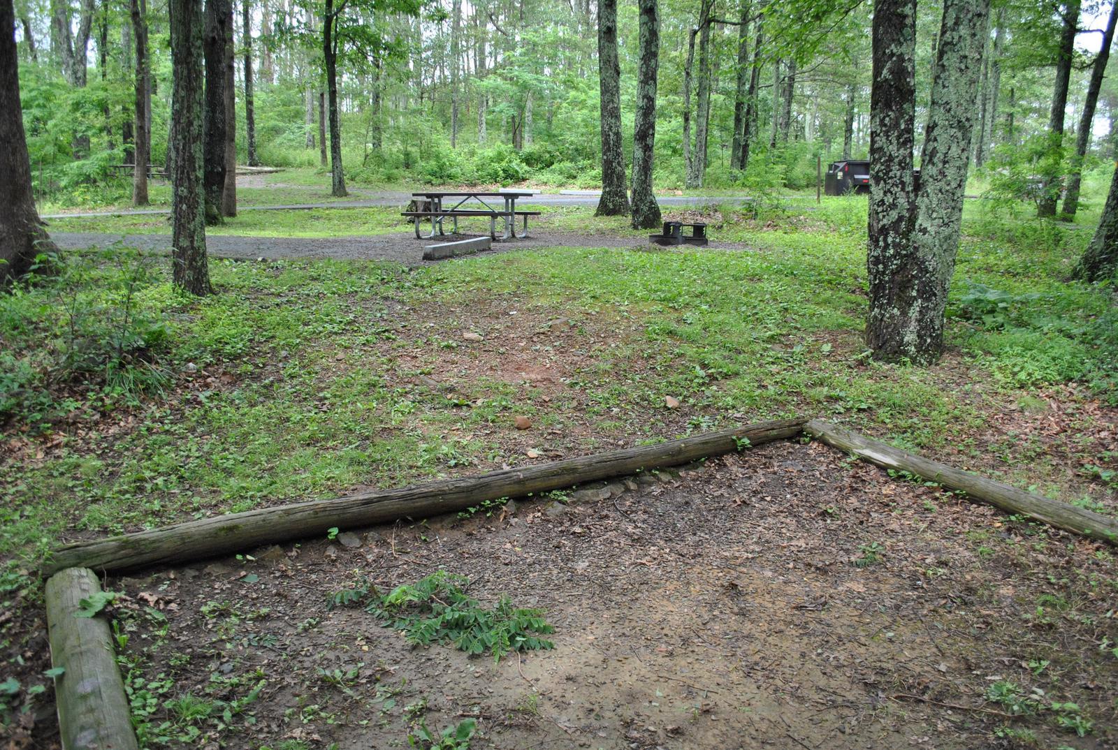 Mathews Arm Campground – Site A067