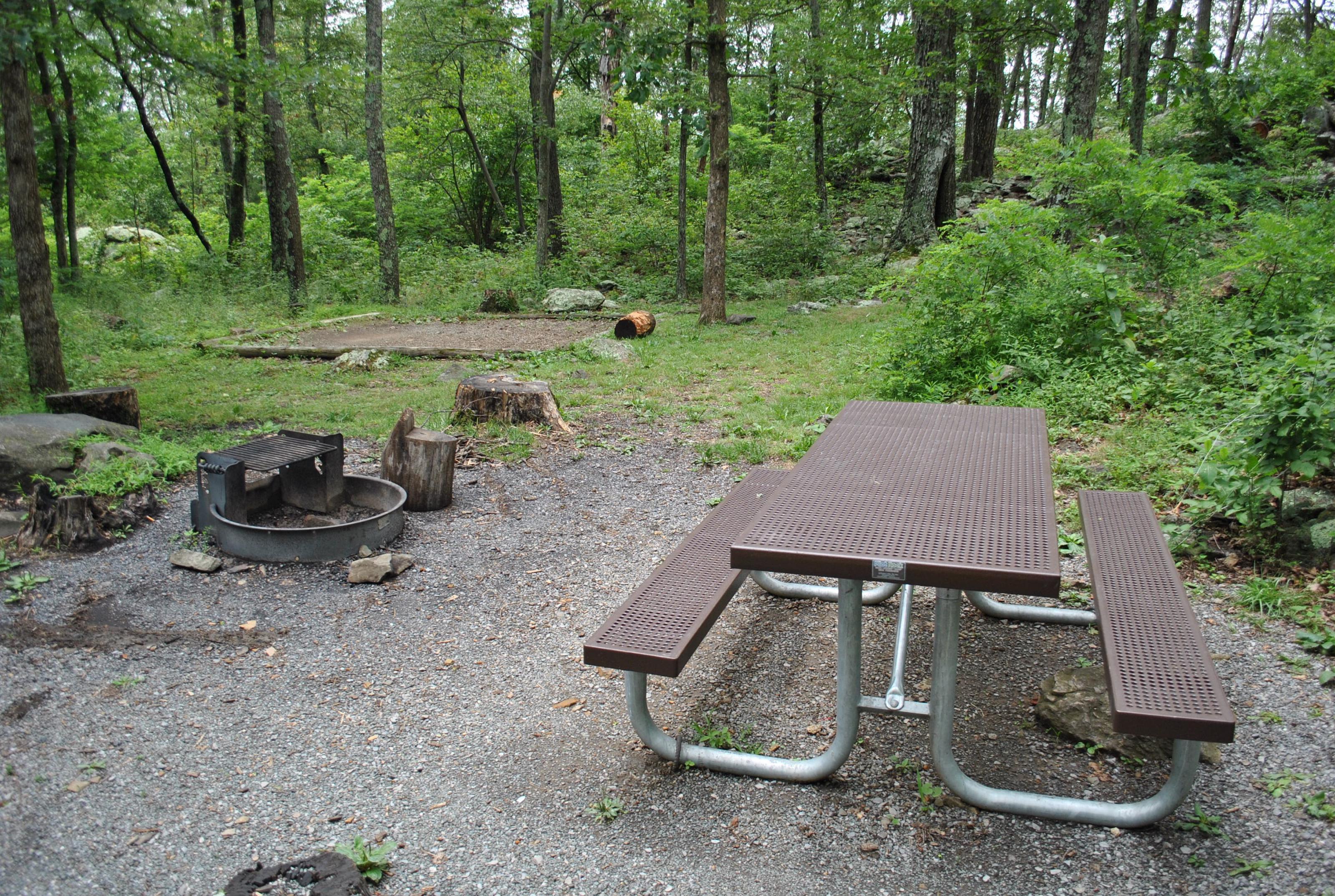 Mathews Arm Campground – Site A068