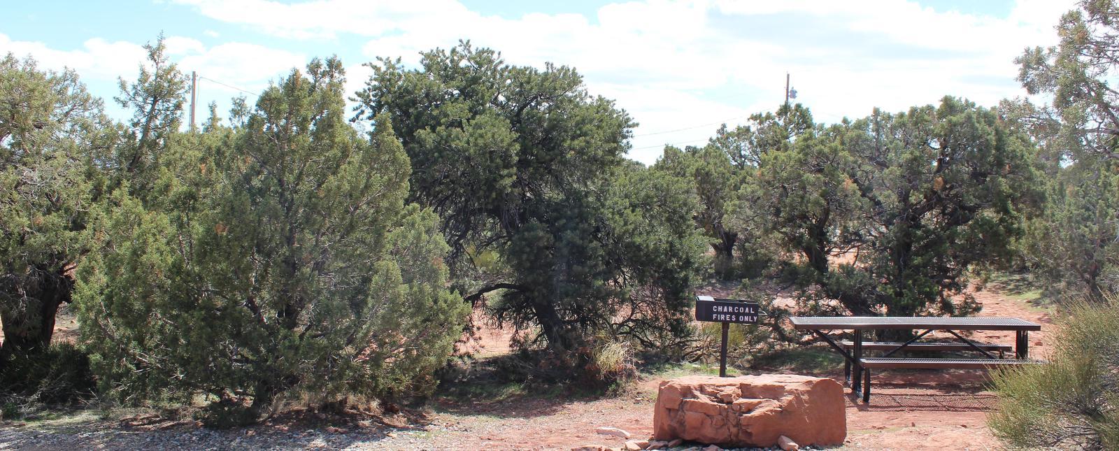 Loop B Site 48