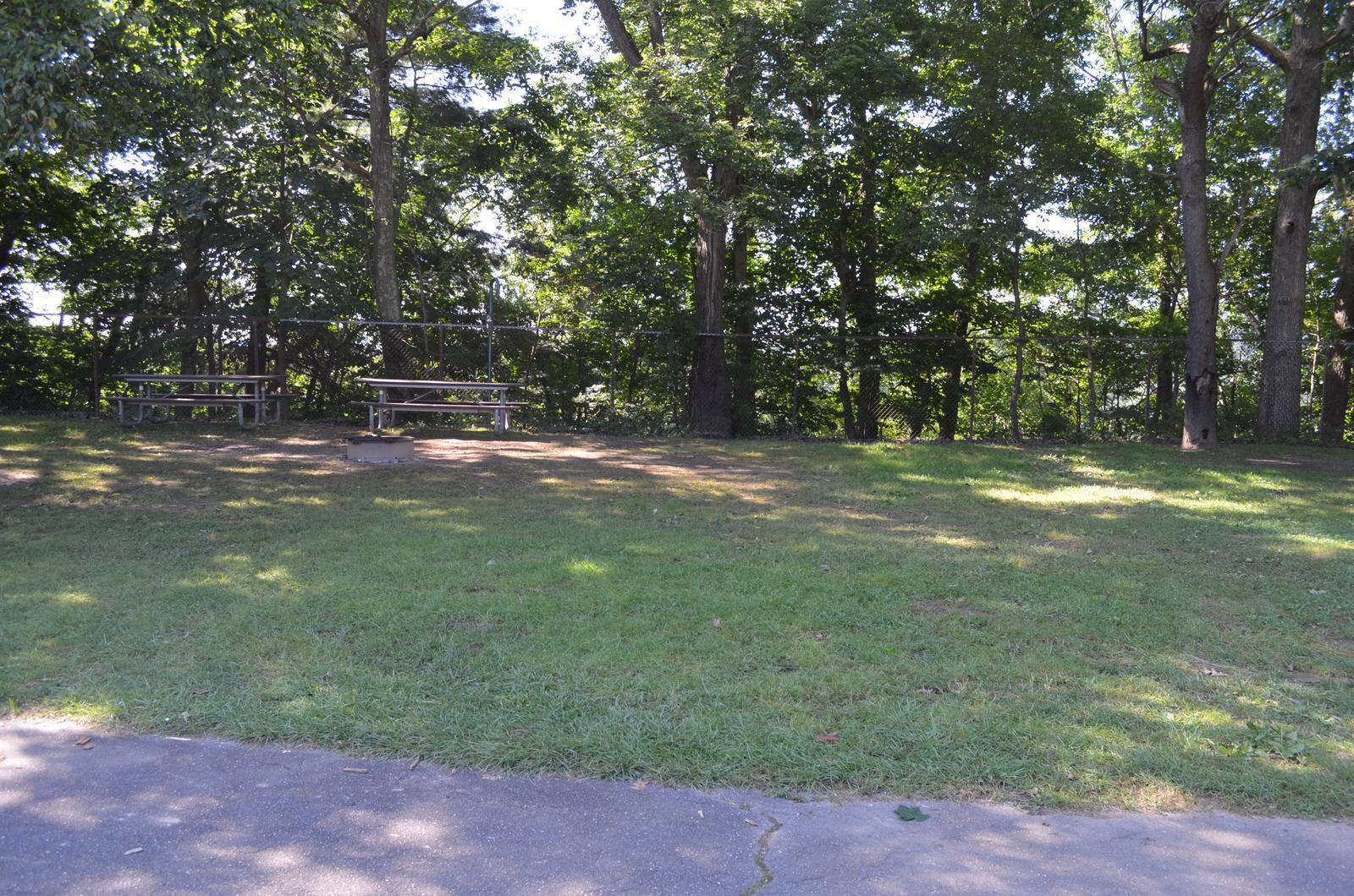 Crooked Creek Lake - Site 19