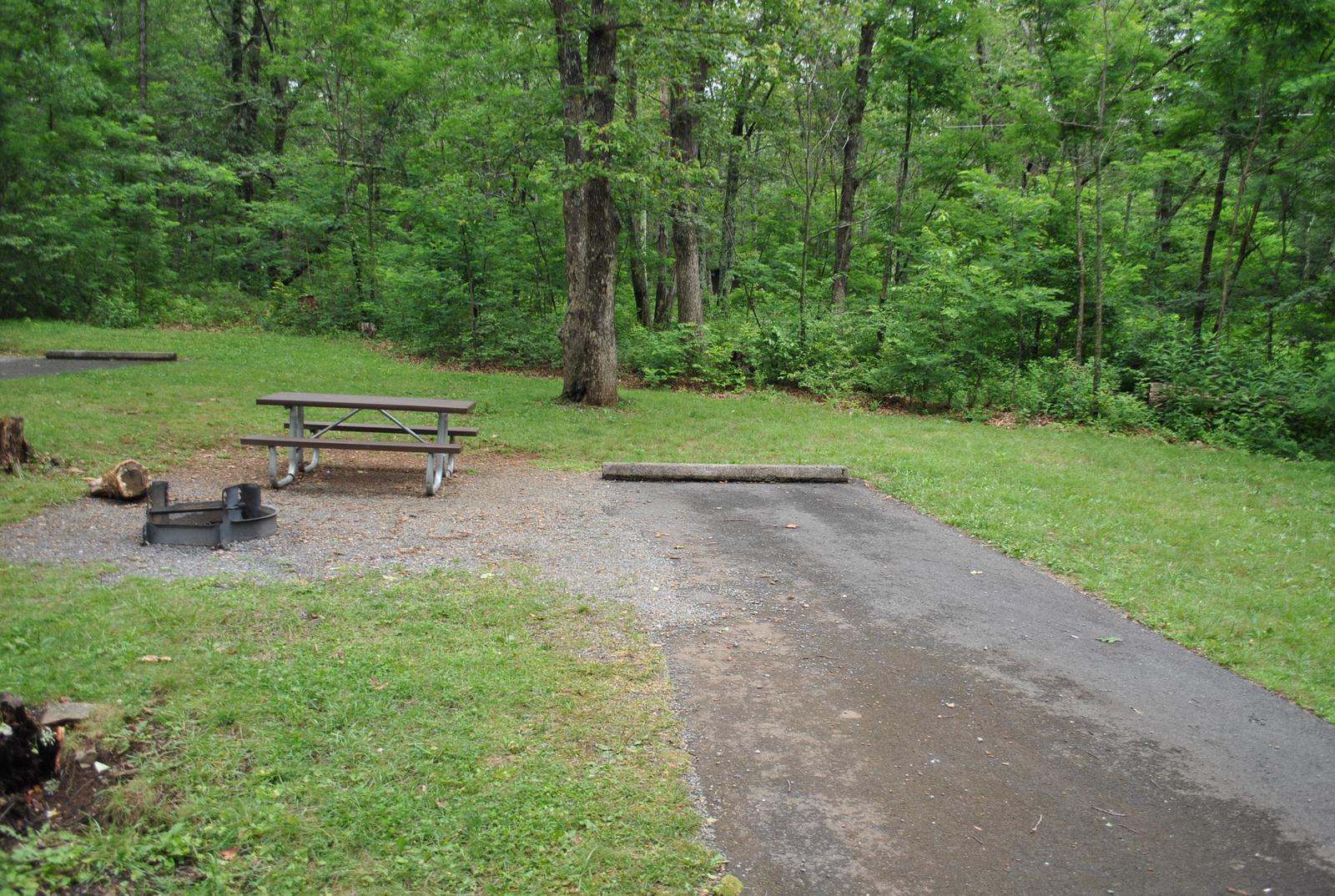 Mathews Arm Campground – Site A077