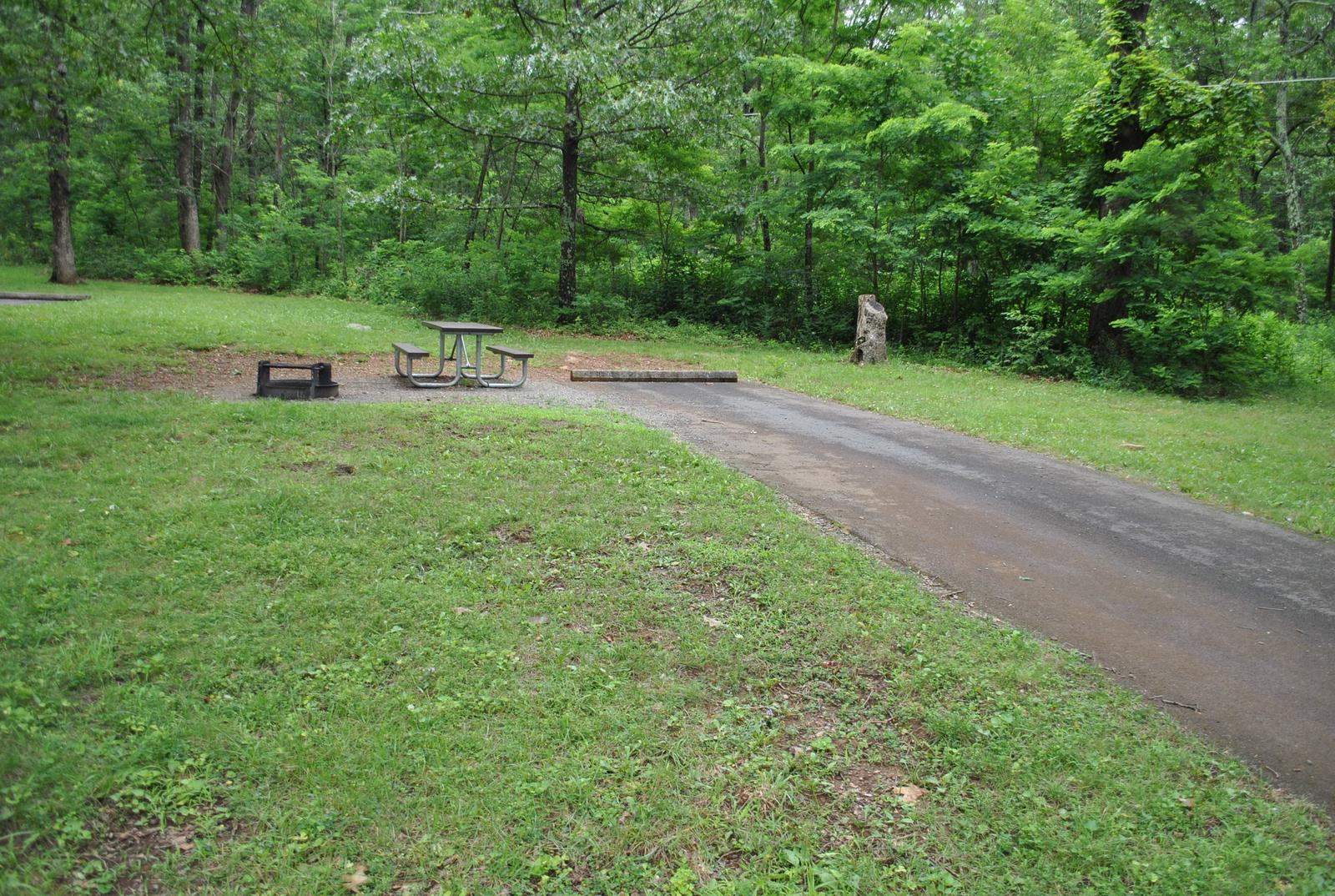 Mathews Arm Campground – Site A079