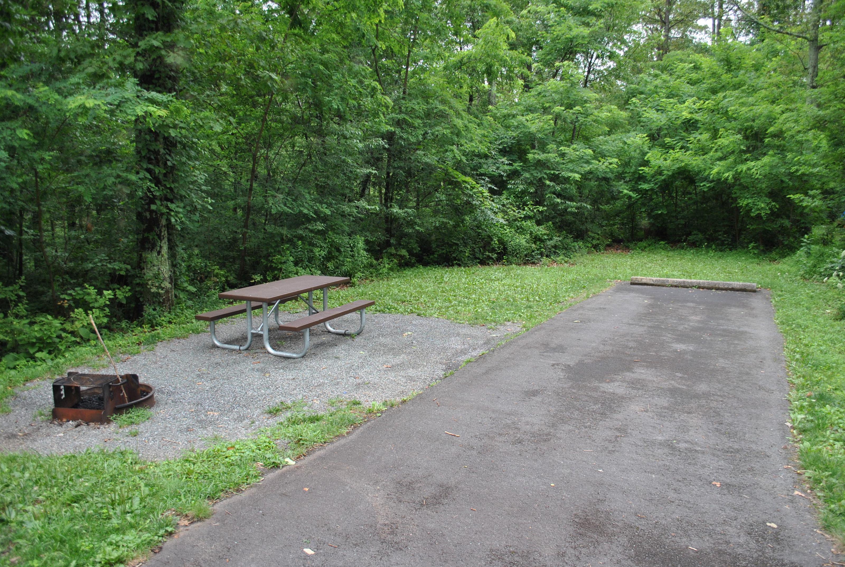 Mathews Arm Campground – Site A080