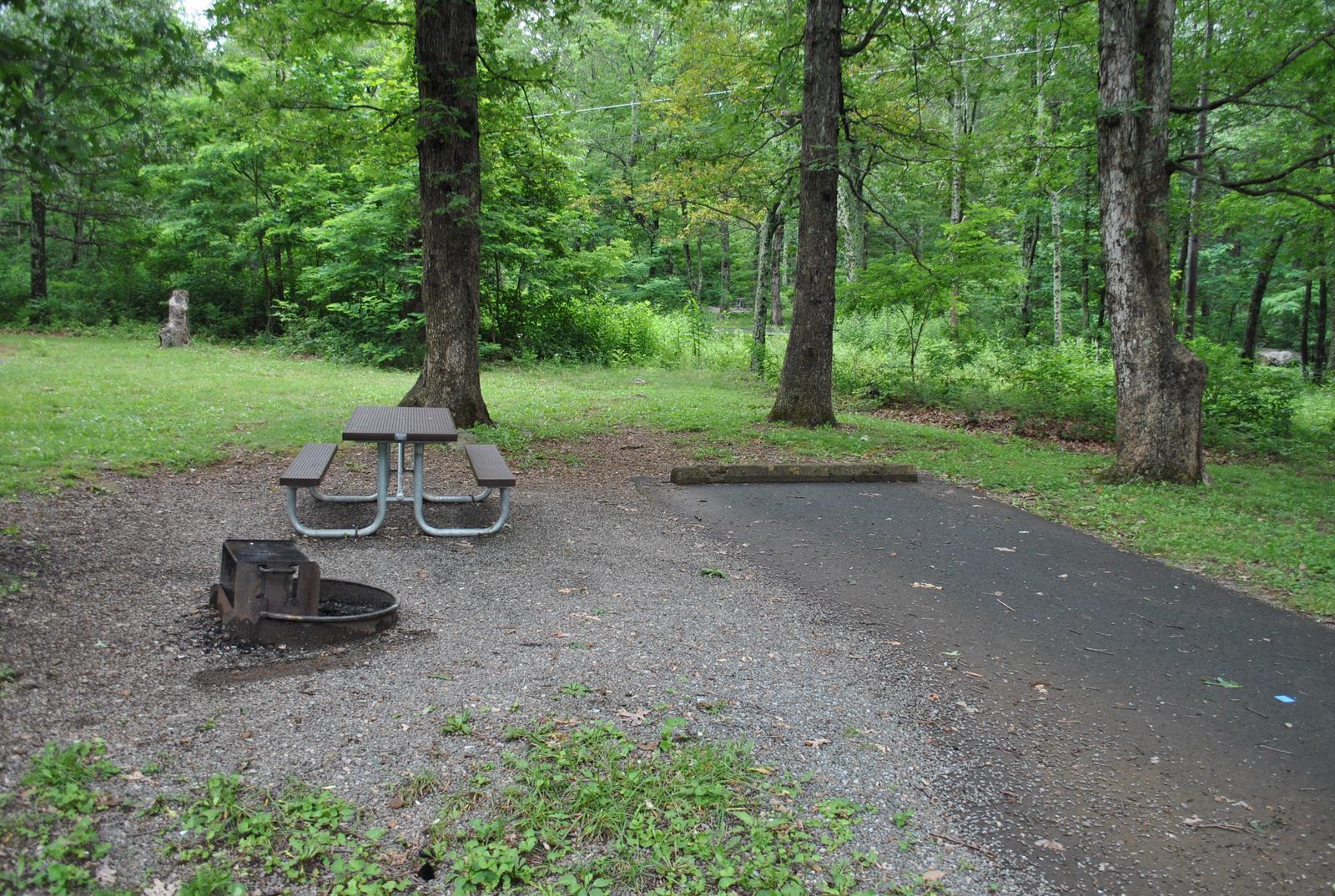 Mathews Arm Campground – Site A081