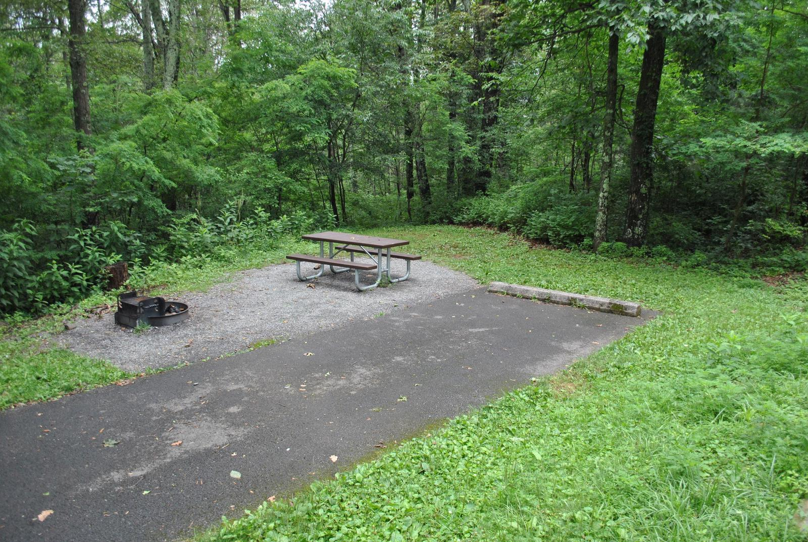 Mathews Arm Campground – Site A082