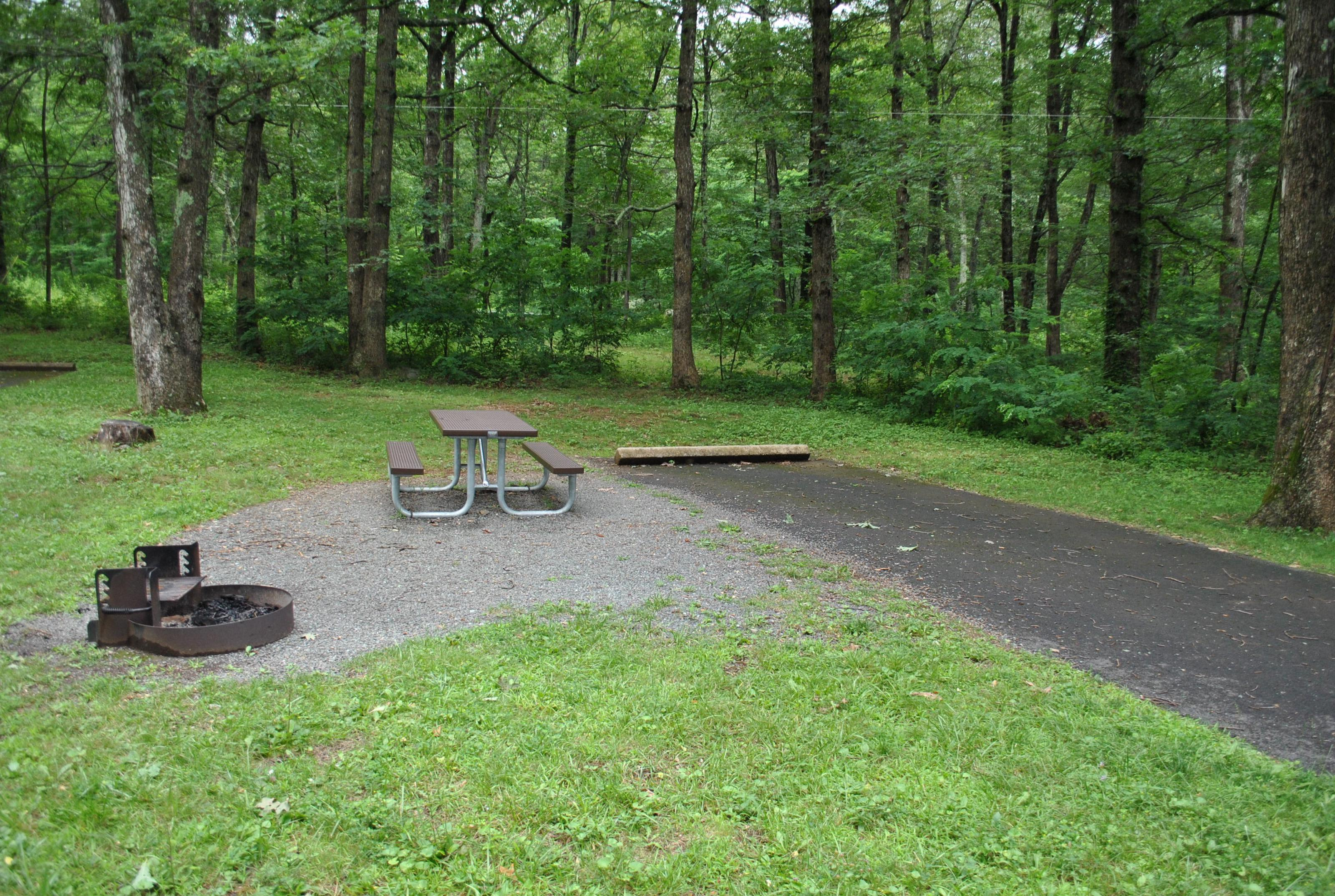 Mathews Arm Campground – Site A084