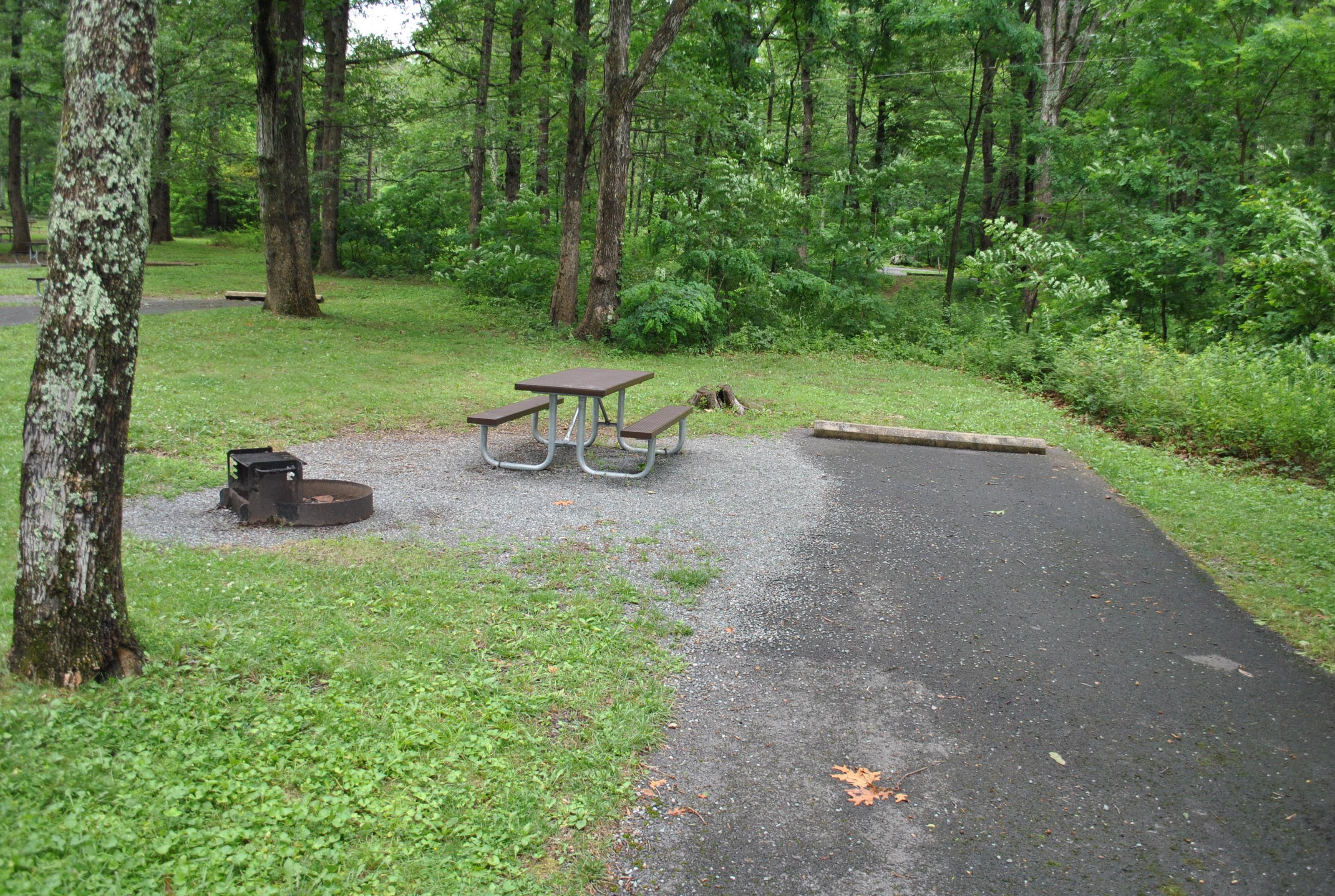 Mathews Arm Campground – Site A085