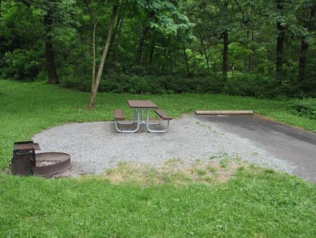 Mathews Arm Campground – Site A087