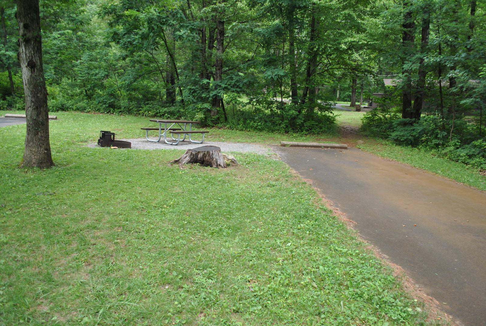 Mathews Arm Campground – Site A091