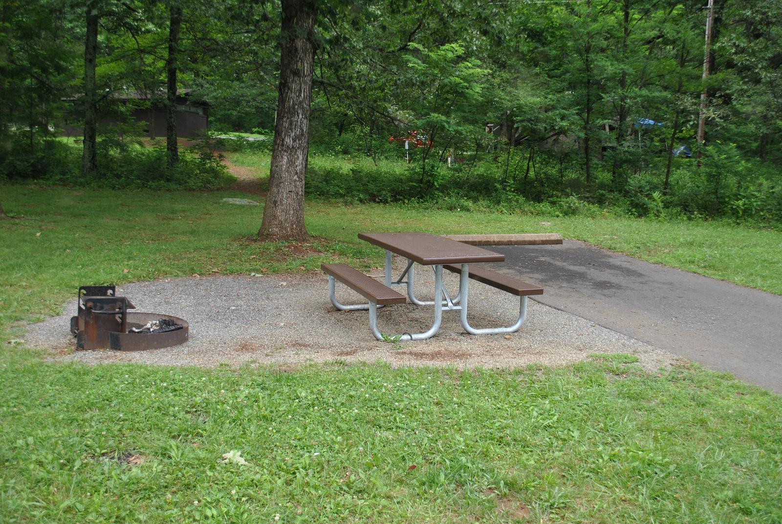 Mathews Arm Campground – Site A095