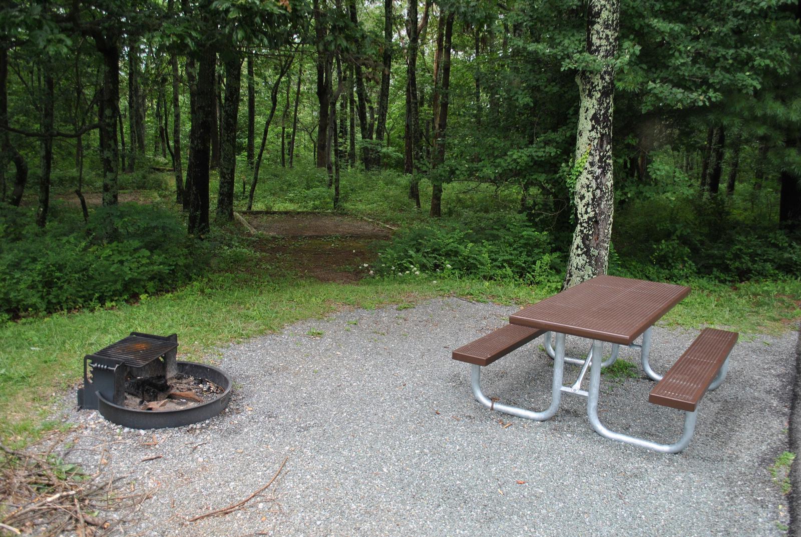 Mathews Arm Campground – Site A096