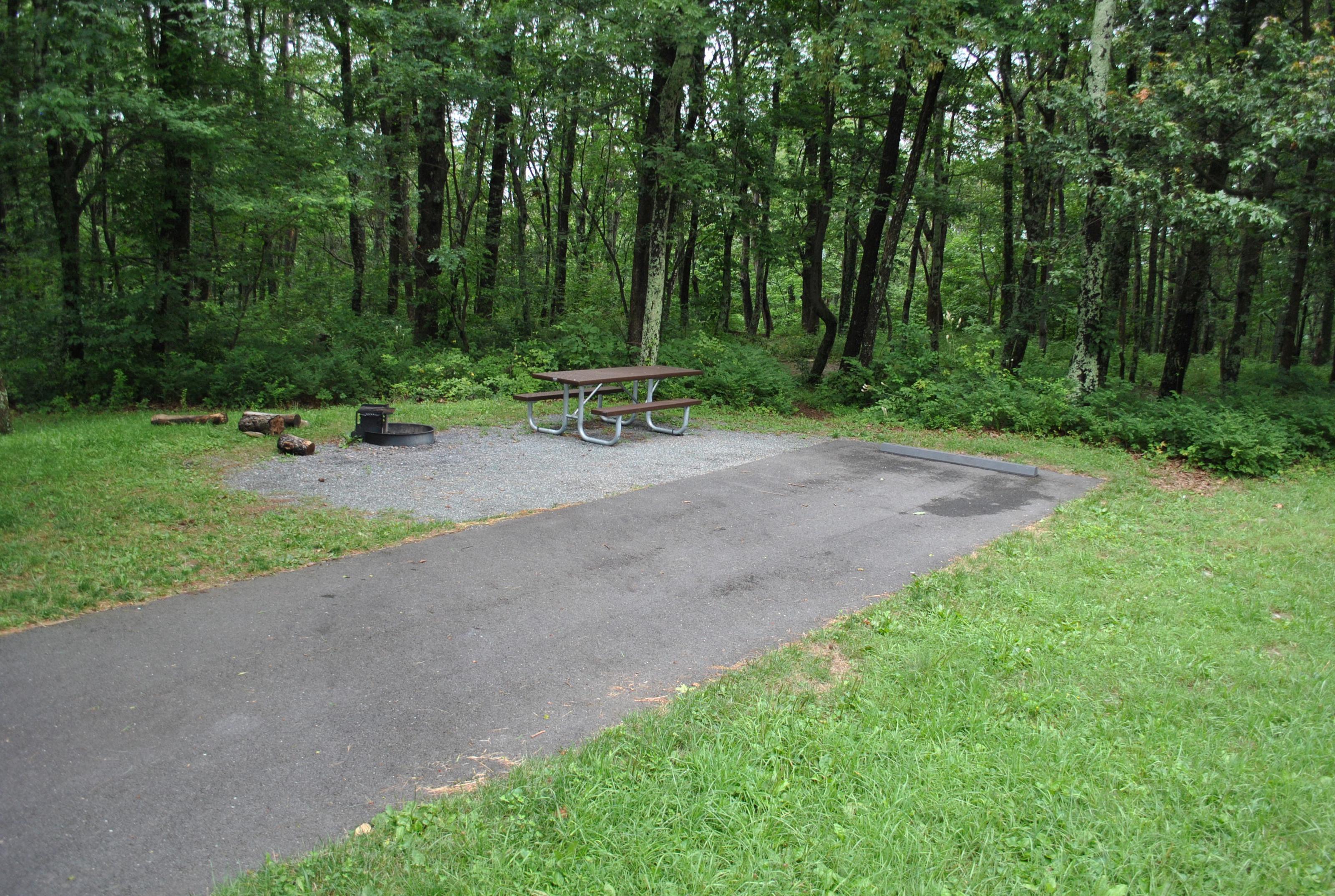 Mathews Arm Campground – Site A098