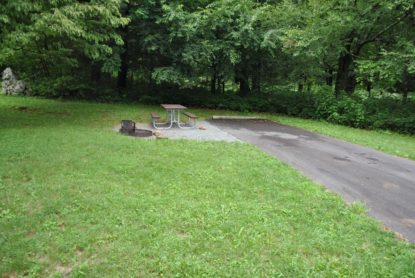 Mathews Arm Campground – Site A101