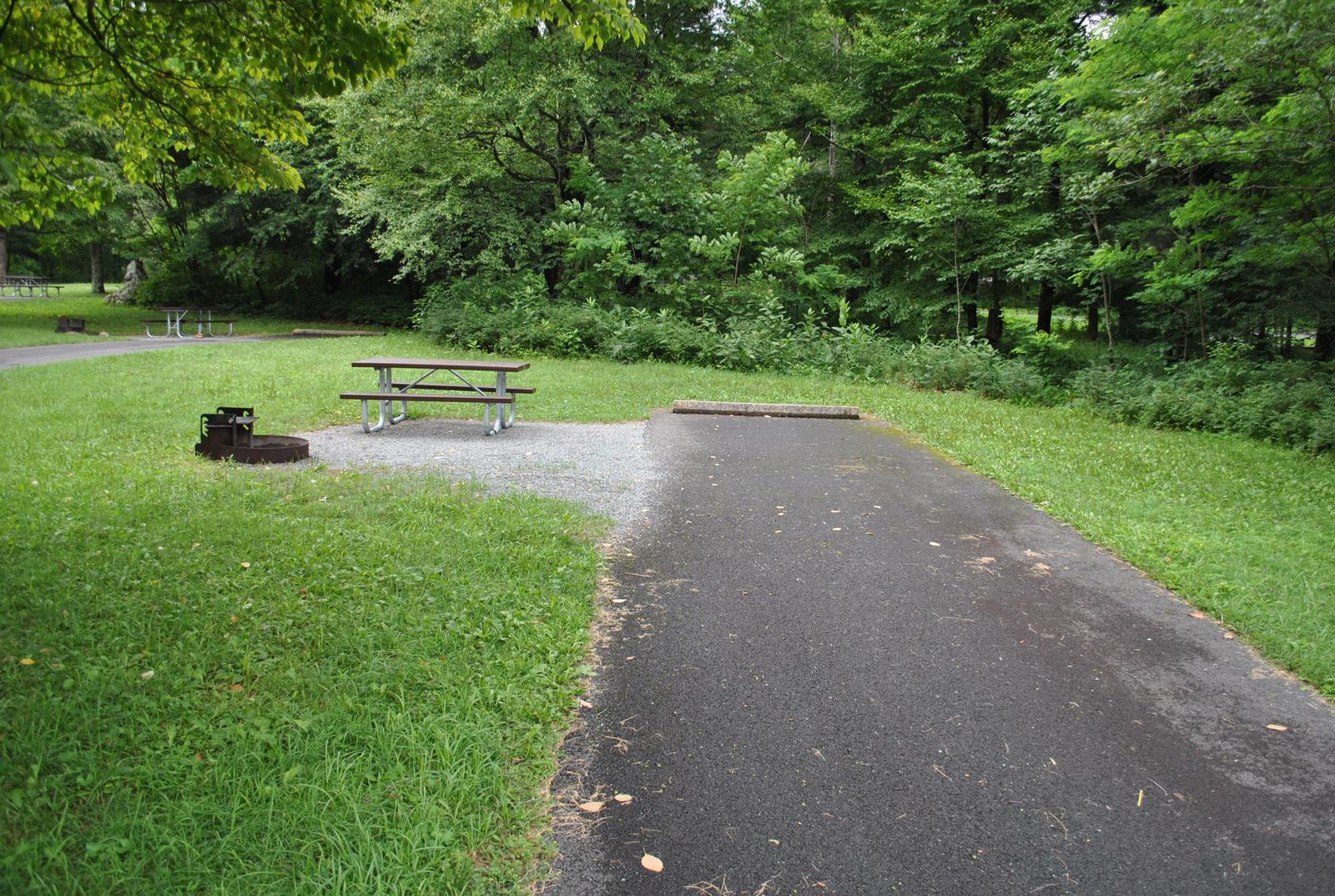 Mathews Arm Campground – Site A103