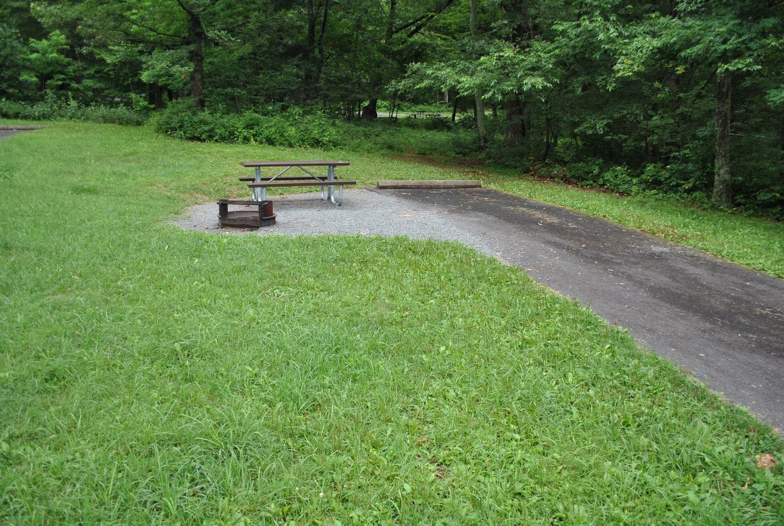 Mathews Arm Campground – Site A105