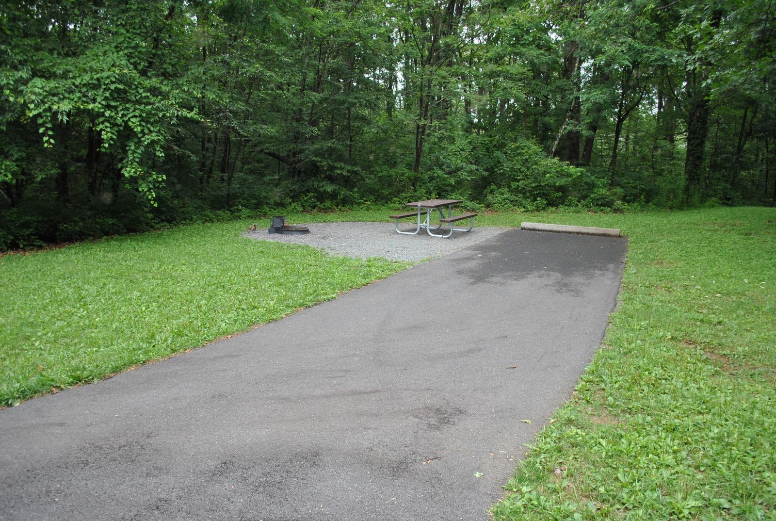 Mathews Arm Campground – Site A106