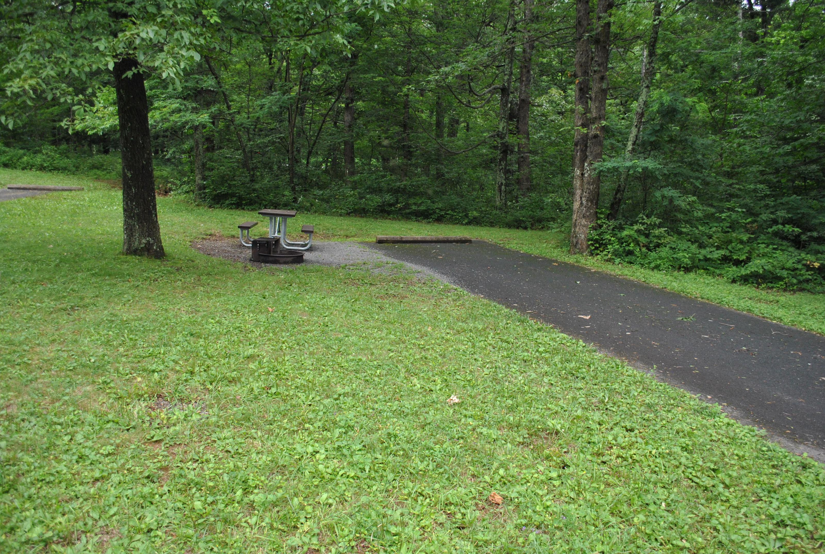 Mathews Arm Campground – Site A107