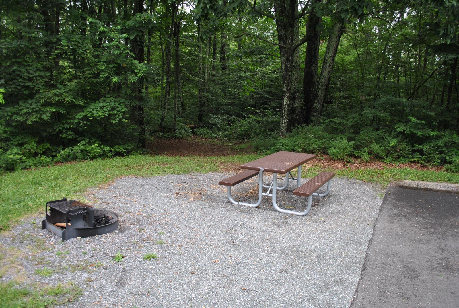 Mathews Arm Campground – Site A108