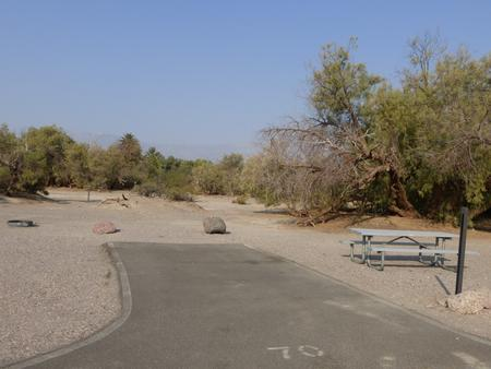 Furnace Creek Campground standard nonelectric site #70 with picnic table and fire ring.