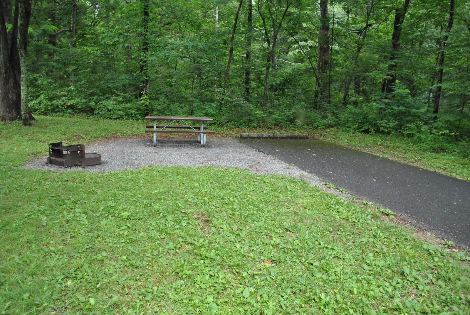 Mathews Arm Campground – Site A109