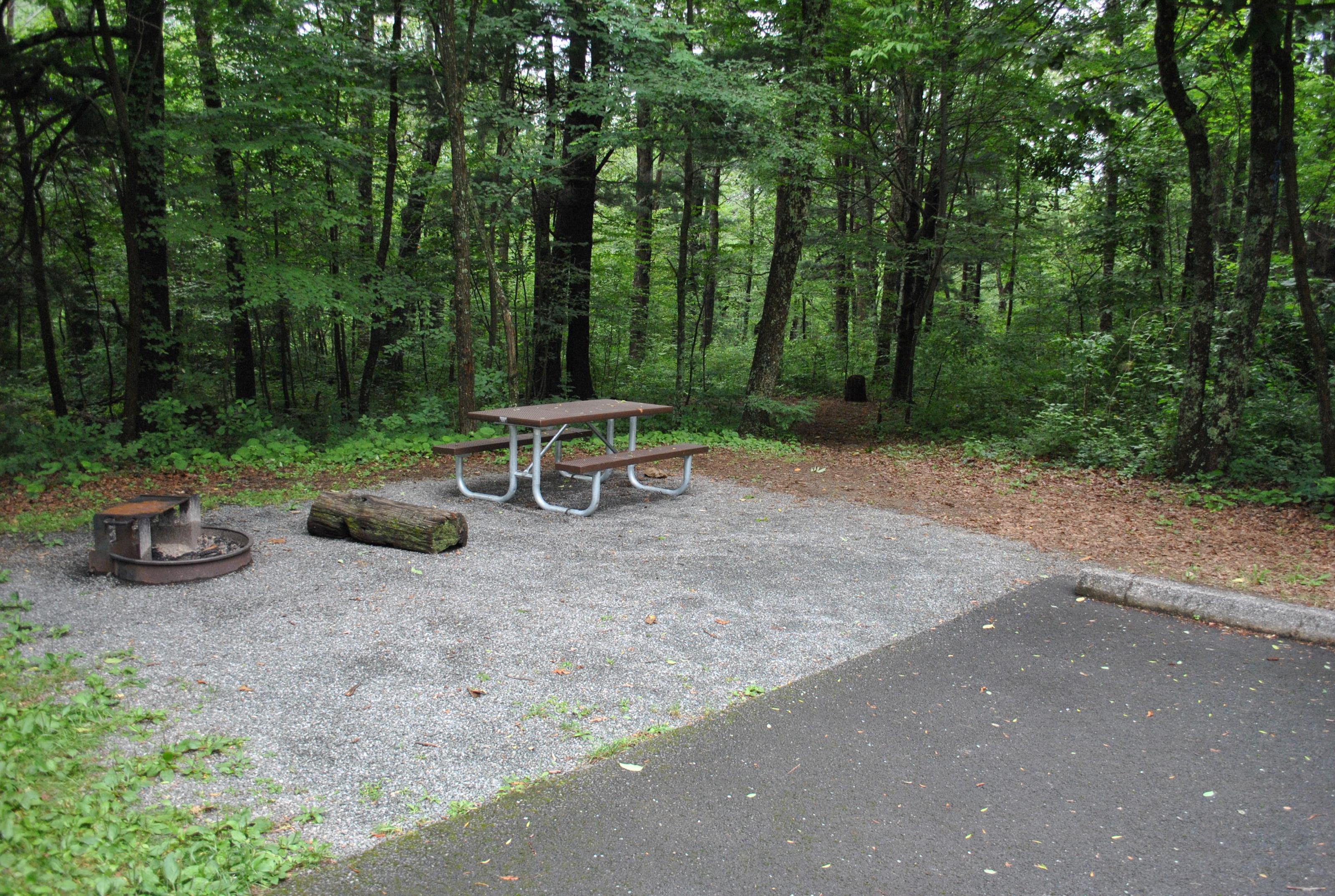 Mathews Arm Campground – Site A110