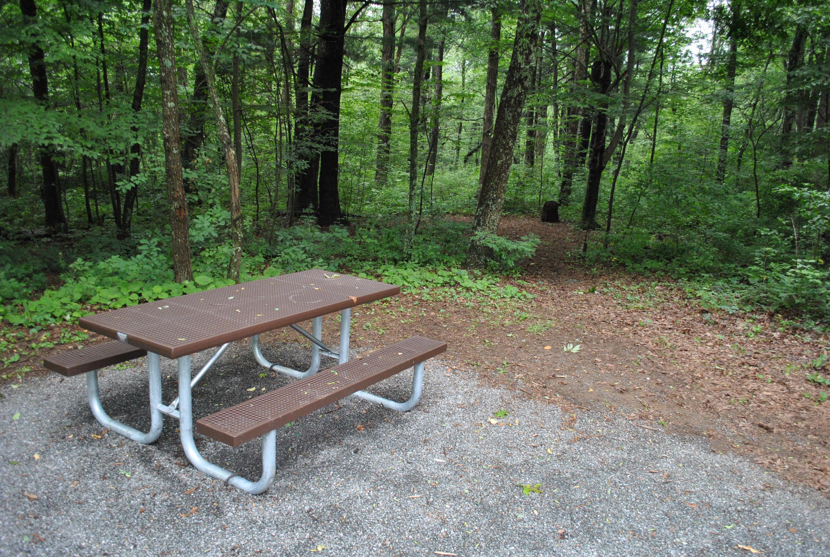 Mathews Arm Campground – Site A110 (Tent Pad)