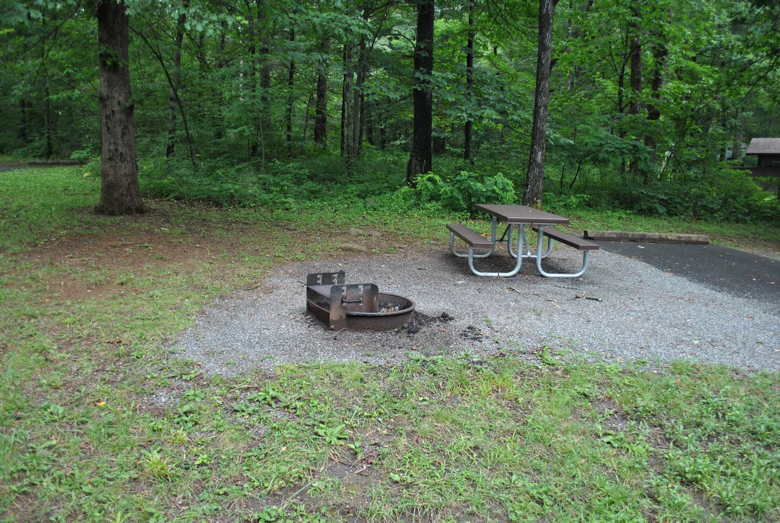 Mathews Arm Campground – Site A111