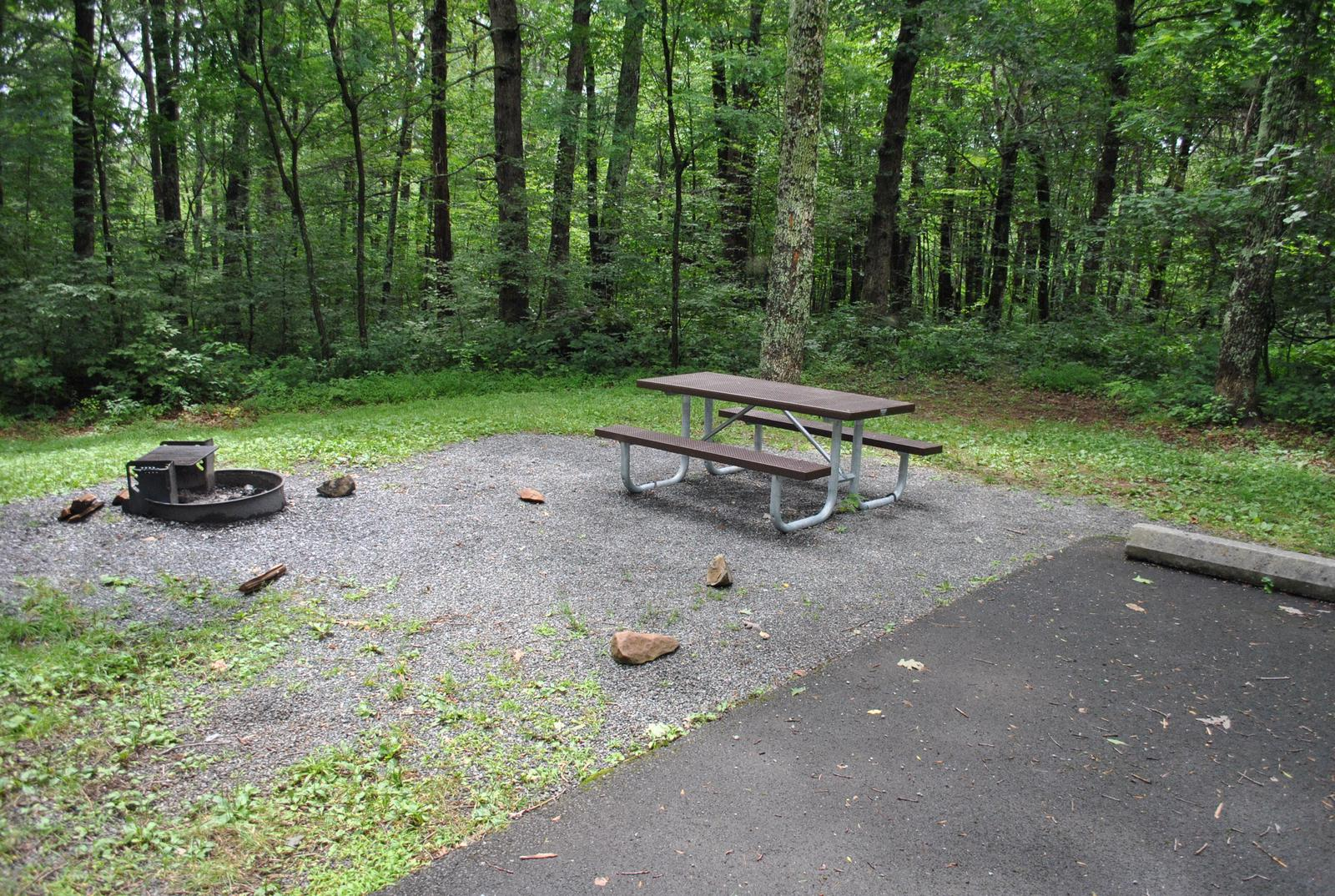 Mathews Arm Campground – Site A113