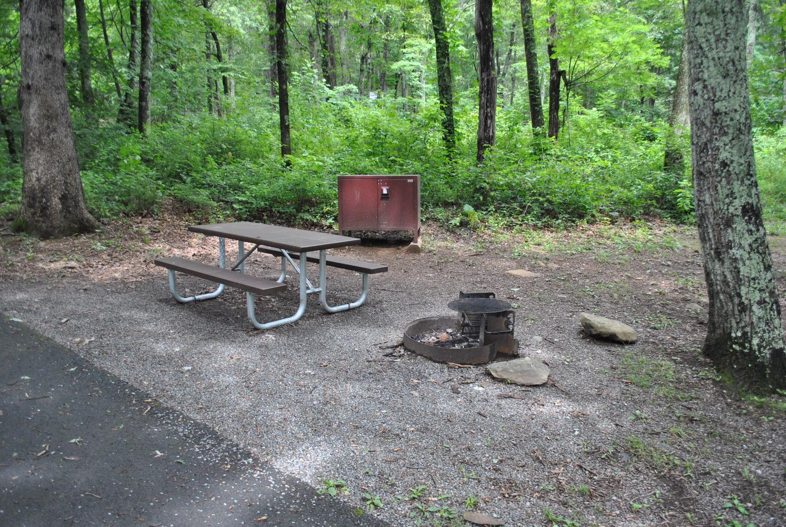 Mathews Arm Campground – Site A115