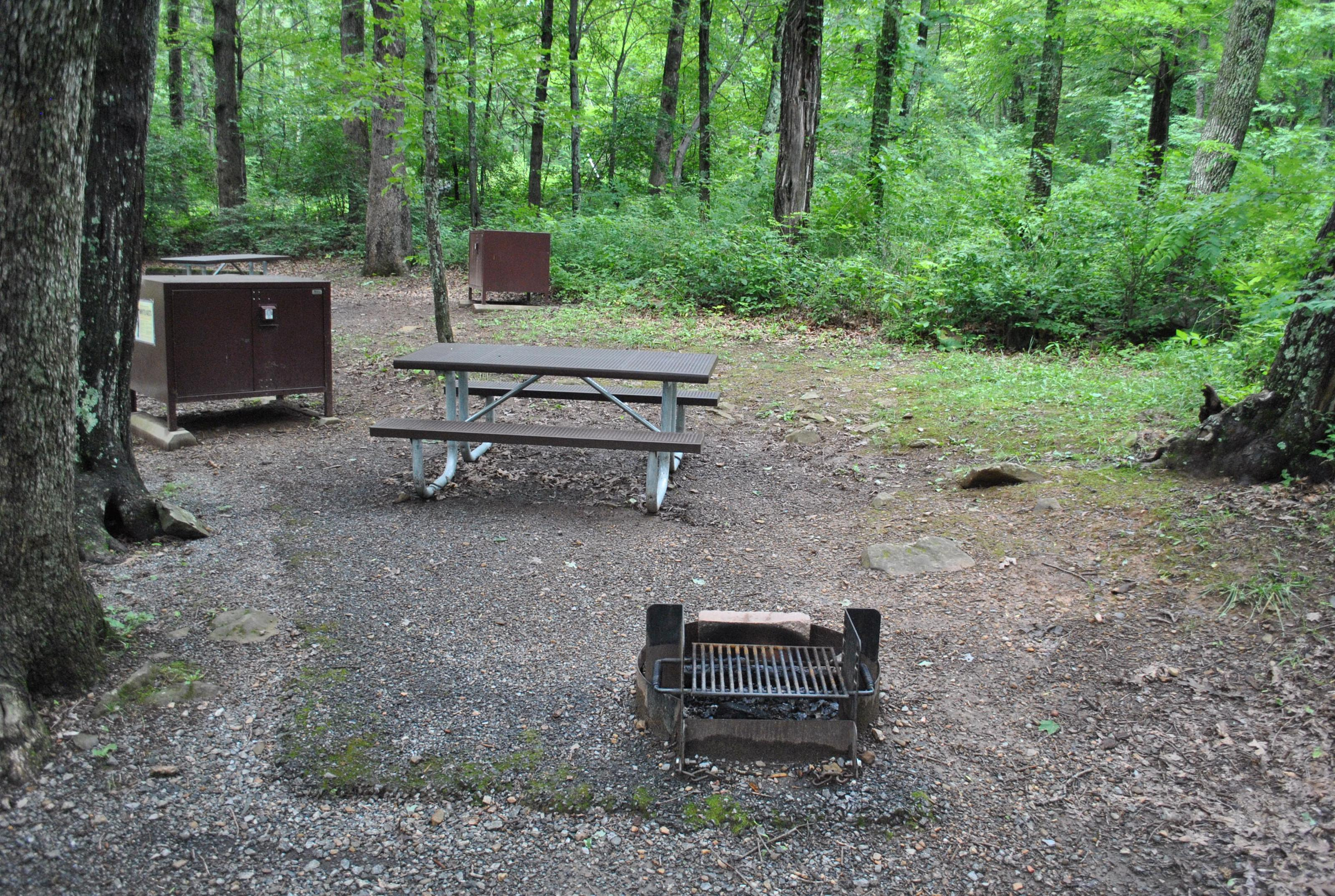 Mathews Arm Campground – Site A116