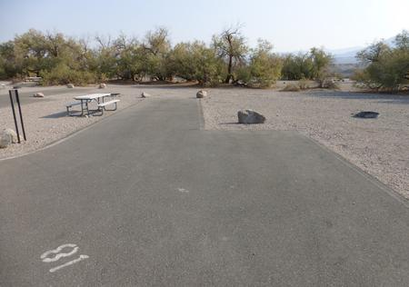 Furnace Creek Campground standard nonelectric site #81 with picnic table and fire ring.