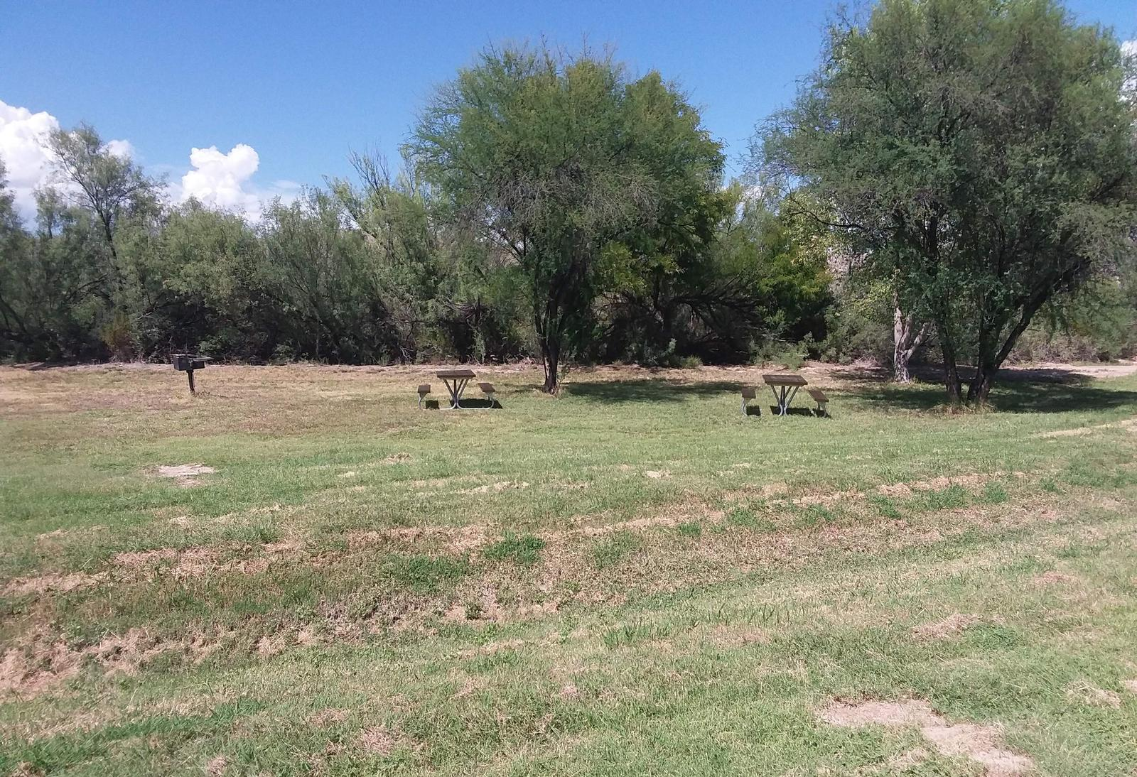 Flat, grassy area with picnic tables and a raised grill