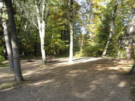 Campsite #116