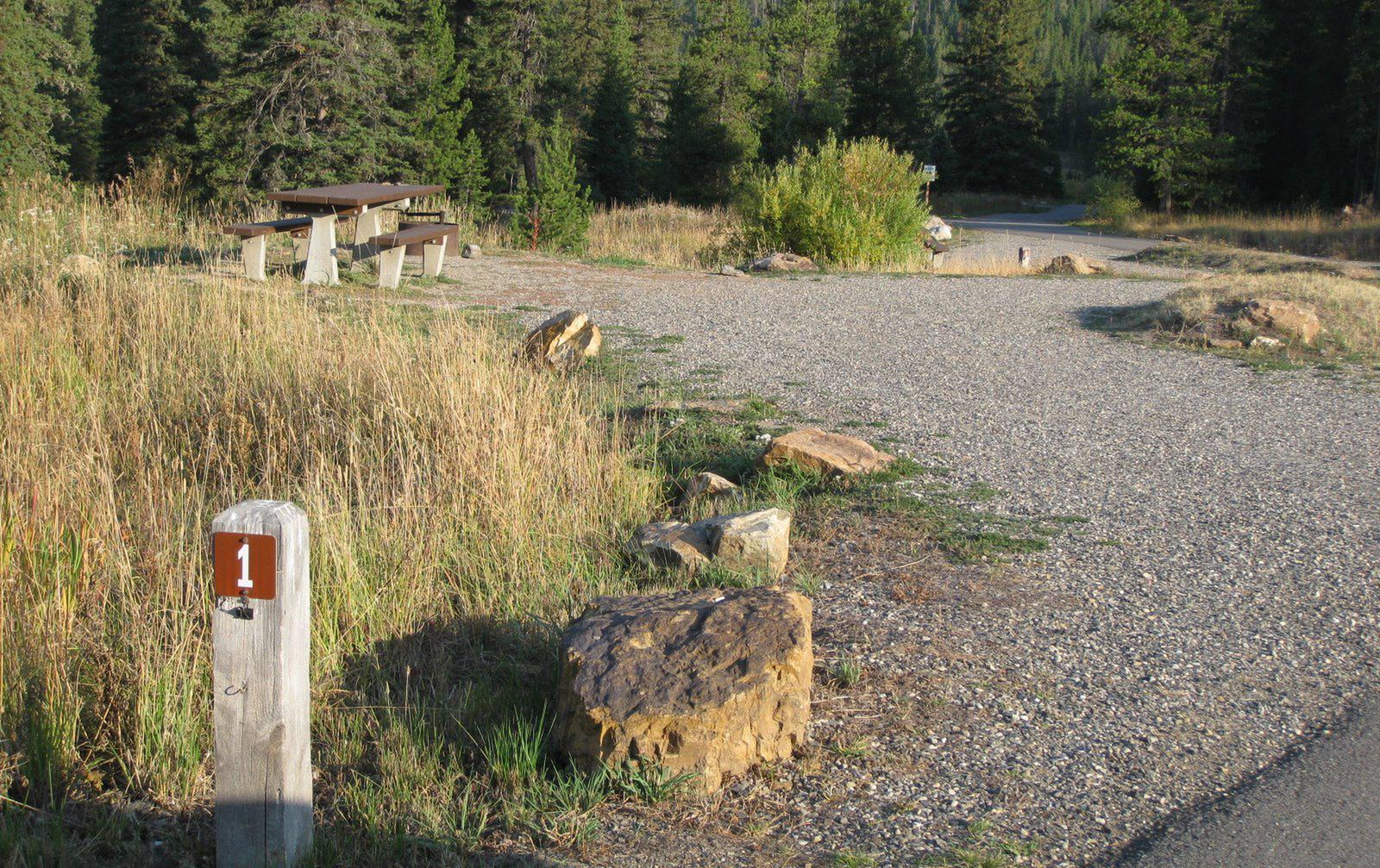 Site 1, campsite surrounded by pine trees, picnic table & fire ringSite 1