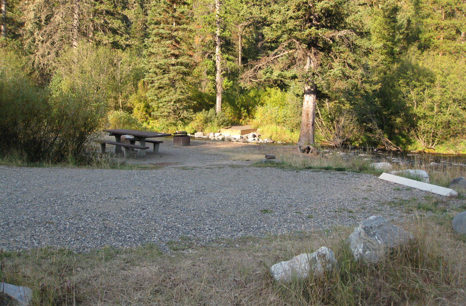 Site 6, campsite surrounded by pine trees, picnic table & fire ringSite 6