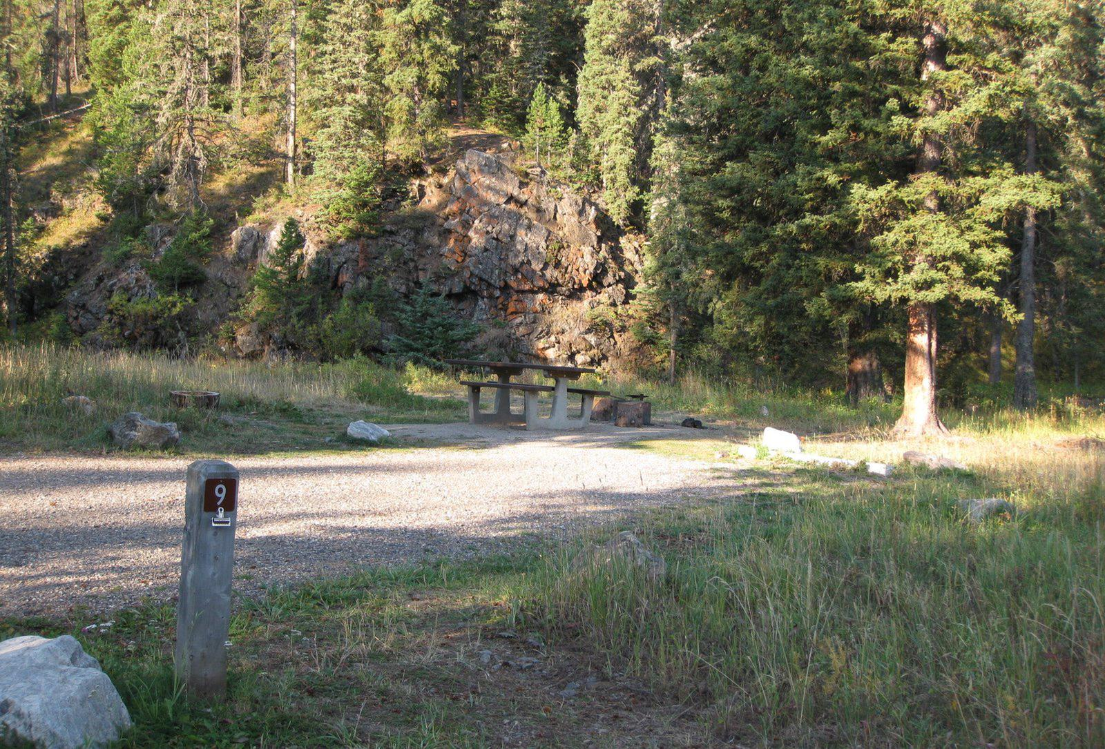 Site 9, campsite surrounded by pine trees, picnic table & fire ringSite 9