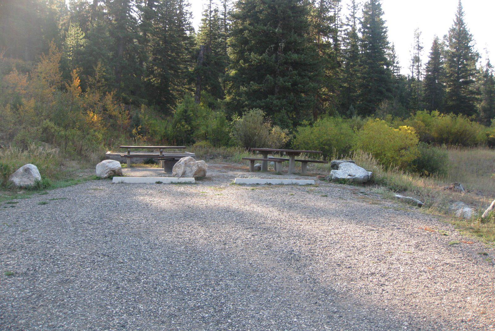 Site 18, campsite surrounded by pine trees, picnic table & fire ringSite 18