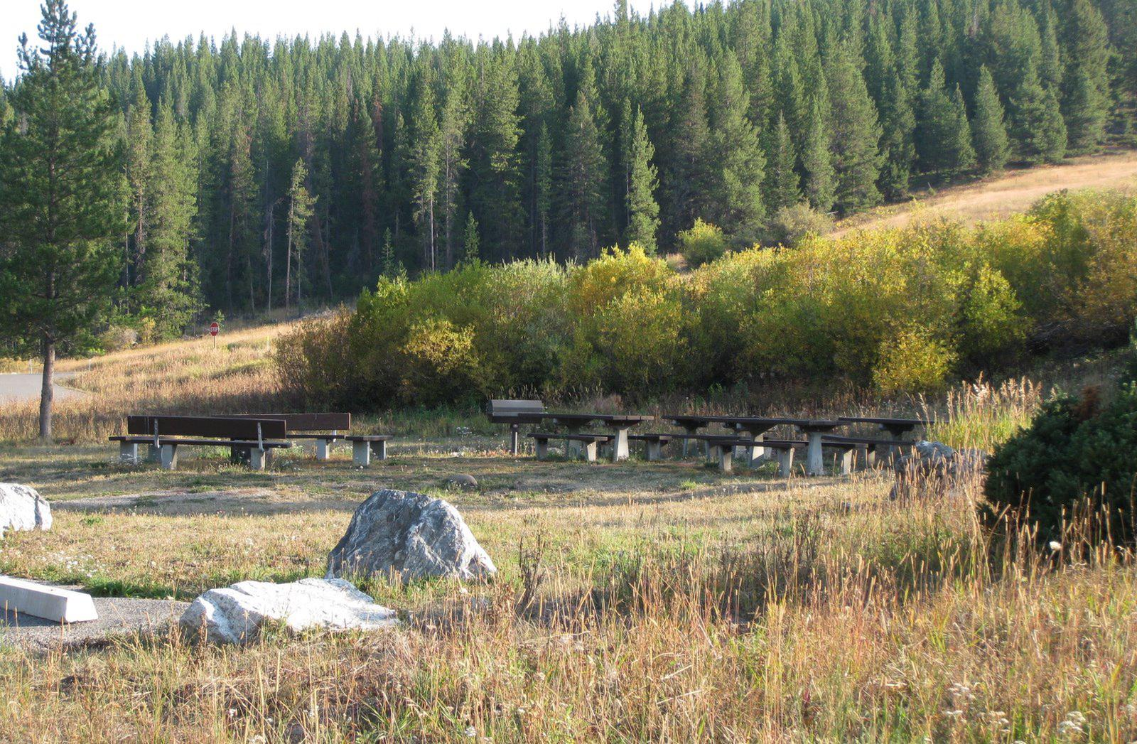 Day Use - Group Site 20, site surrounded by pine trees, picnic tables & fire ring & benchesDay Use - Group Site 20