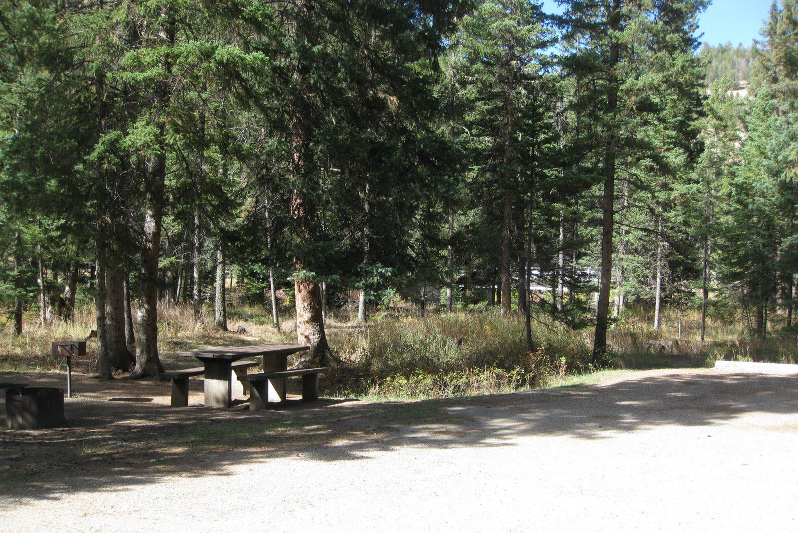 Site 5, campsite surrounded by pine trees, picnic table & fire ringSite 5