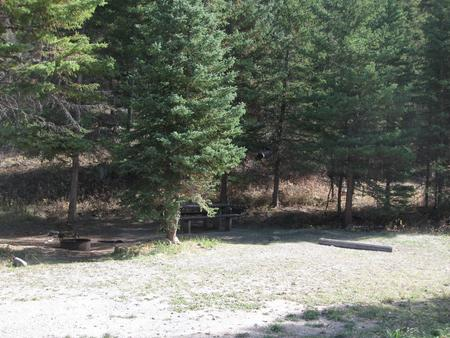 Site 16, campsite surrounded by pine trees, picnic table & fire ringSite 16