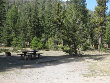 Site 19, campsite surrounded by pine trees, picnic table & fire ringSite 19