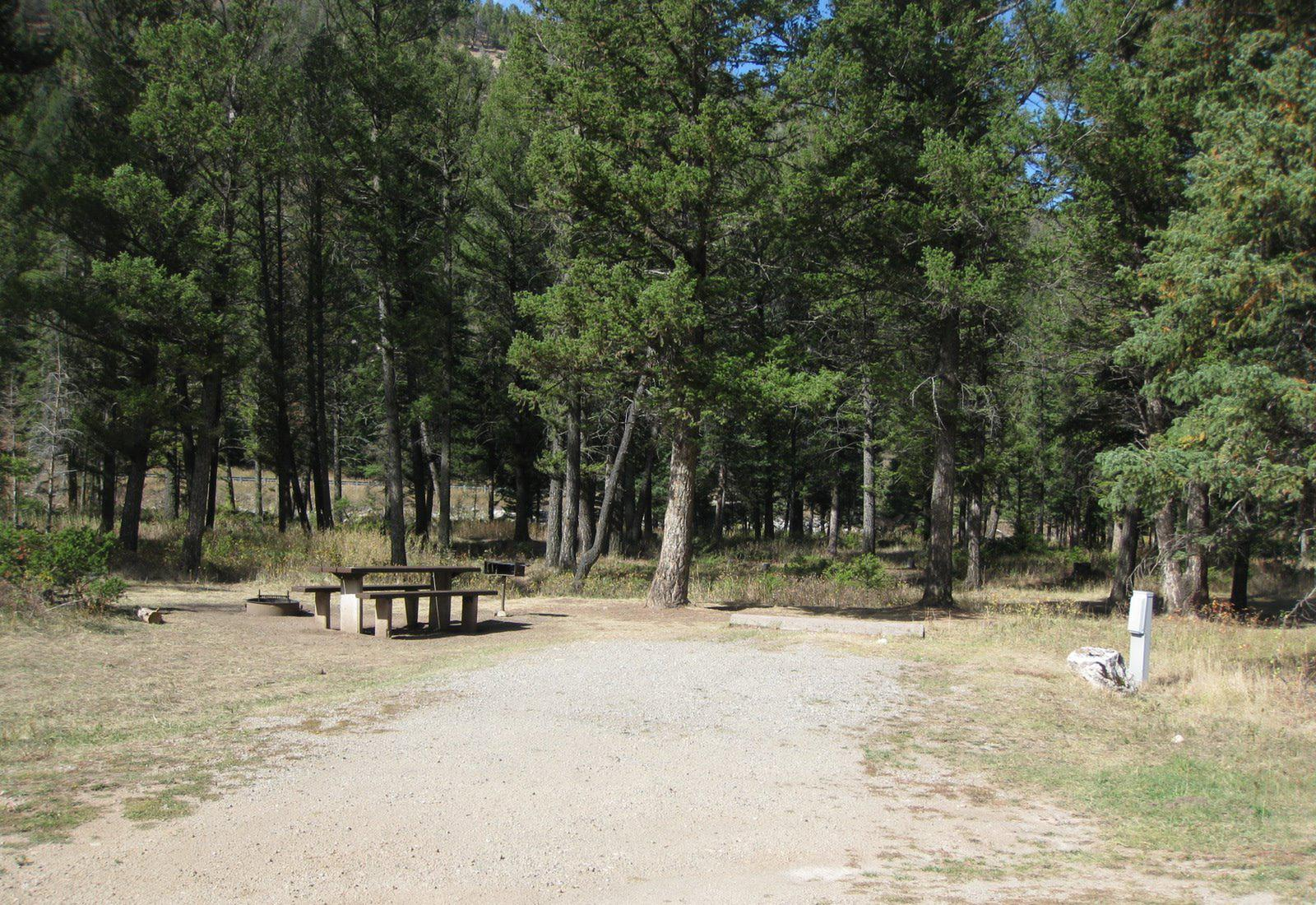Site 23, campsite surrounded by pine trees, picnic table & fire ringSite 23