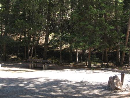 Site 27, campsite surrounded by pine trees, picnic table & fire ringHost Site 27