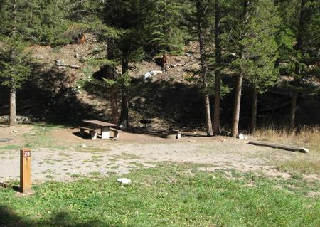 Site 28, campsite surrounded by pine trees, picnic table & fire ringSite 28