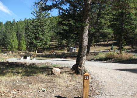 Site 38, campsite surrounded by pine trees, picnic table & fire ringSite 38